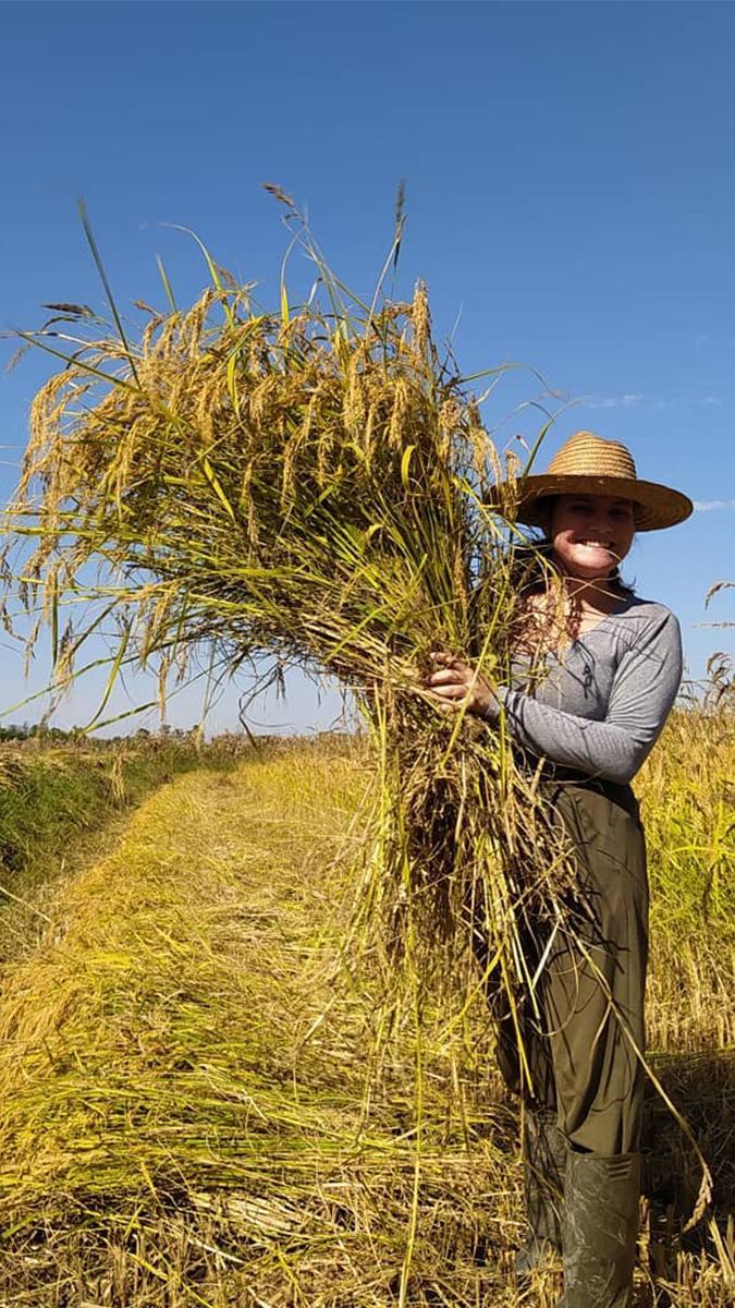 <p>Diante das consequências da pandemia , Movimento dos Pequenos Agricultores conectou diferentes pontas da questão alimentar para responder à crise a partir da agroecologia</p>